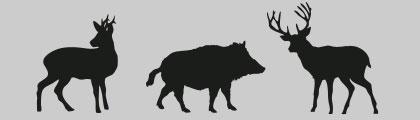 El lebaniego - Articulos de caza milanuncios ...